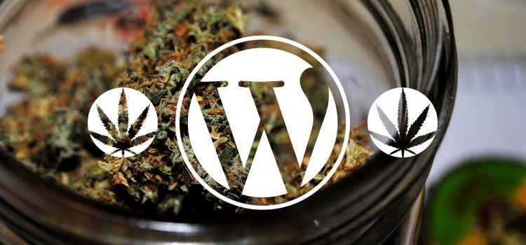 WordPress dispensary plugins - extend CannaBiz dispensary theme