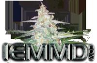 IEMMD-4