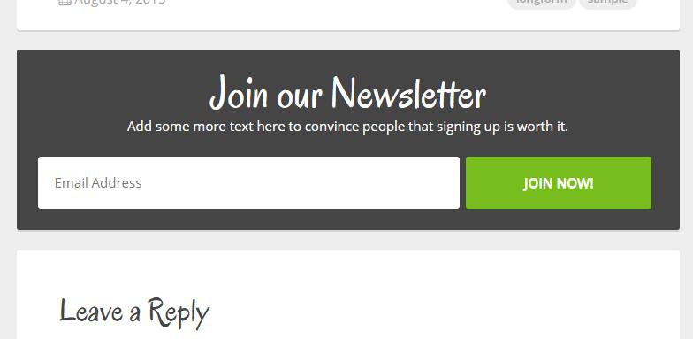 CannaBiz WordPress Theme - Newsletter Box Customization