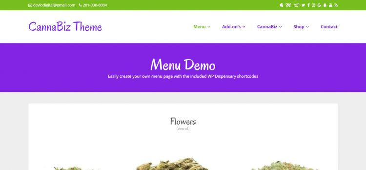 CannaBiz WordPress Theme styles previous to version 2.1
