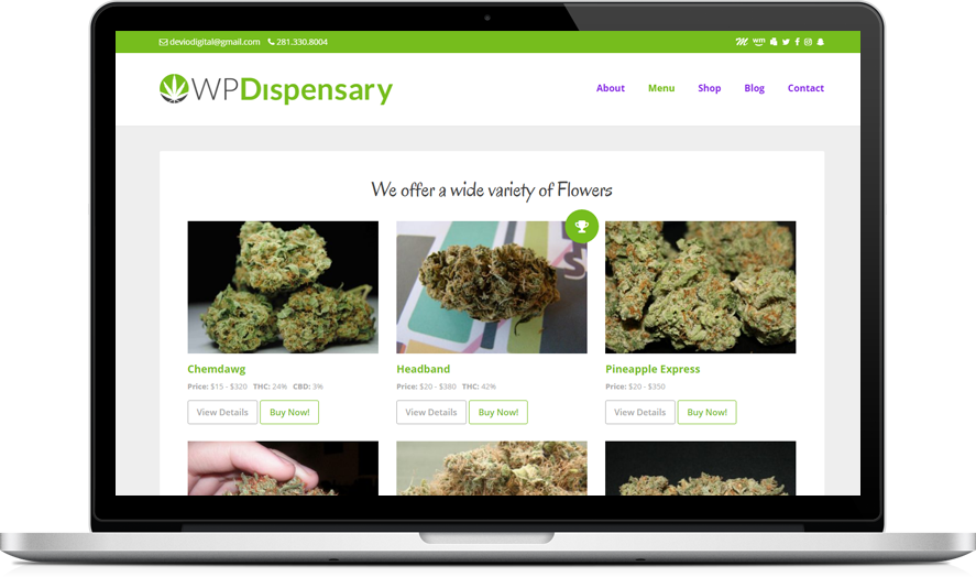 CannaBiz WordPress marijuana theme
